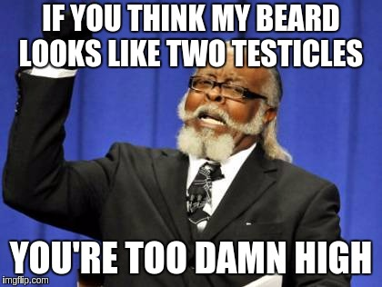 Too Damn High Meme | IF YOU THINK MY BEARD LOOKS LIKE TWO TESTICLES YOU'RE TOO DAMN HIGH | image tagged in memes,too damn high | made w/ Imgflip meme maker