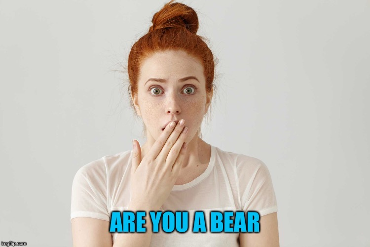 ARE YOU A BEAR | made w/ Imgflip meme maker