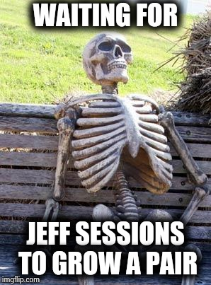 You got some firing to do | WAITING FOR JEFF SESSIONS TO GROW A PAIR | image tagged in memes,waiting skeleton,attorney general,guts,your country needs you,i bet he's thinking about other women | made w/ Imgflip meme maker