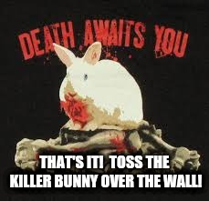 THAT'S IT!  TOSS THE KILLER BUNNY OVER THE WALL! | made w/ Imgflip meme maker