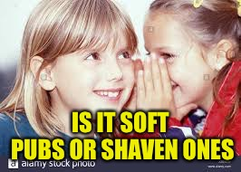 IS IT SOFT PUBS OR SHAVEN ONES | made w/ Imgflip meme maker