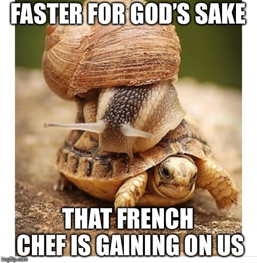 Escargot and turtle stew | FASTER FOR GOD'S SAKE THAT FRENCH CHEF IS GAINING ON US | image tagged in snail riding turtle,snail,french cooking,turtle stew,memes | made w/ Imgflip meme maker