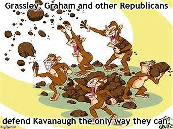 Grassley, Graham and other Republicans defend Kavanaugh the only way they can. | image tagged in grassley,lindsey graham,brett kavanaugh,republicans,gop | made w/ Imgflip meme maker