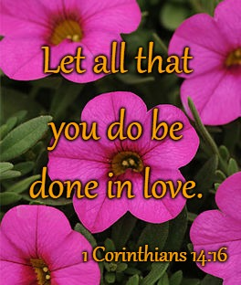 1 Corinthians 14:16 Let All That You Do Be Done In Love | Let all that 1 Corinthians 14:16 you do be done in love. | image tagged in bible,holy bible,holy spirit,bible verse,verse,god | made w/ Imgflip meme maker