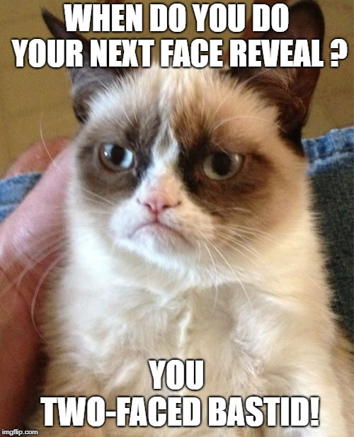 Grumpy Cat Meme | WHEN DO YOU DO YOUR NEXT FACE REVEAL ? YOU TWO-FACED BASTID! | image tagged in memes,grumpy cat | made w/ Imgflip meme maker