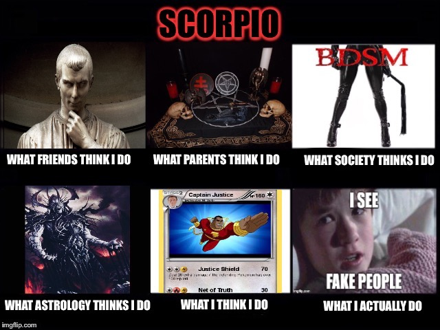 What people think I do - Scorpio sign | SCORPIO ZODIAC WHAT PPL THINK I DO MEME | image tagged in zodiac,astrology,scorpio,meme,what people think i do,what i really do | made w/ Imgflip meme maker