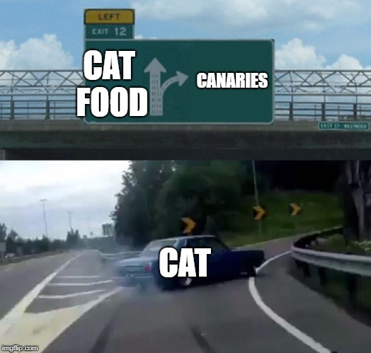 CAT FOOD CANARIES CAT | image tagged in memes,left exit 12 off ramp | made w/ Imgflip meme maker