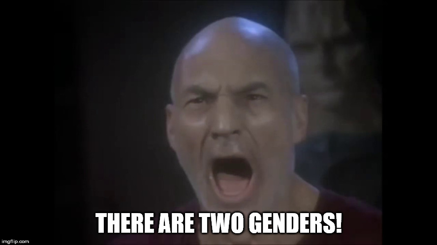 There are Two Genders | THERE ARE TWO GENDERS! | image tagged in there are four lights,two genders,political correctness,identity politics,politics,political | made w/ Imgflip meme maker