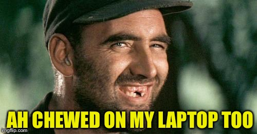 Deliverance HIllbilly | AH CHEWED ON MY LAPTOP TOO | image tagged in deliverance hillbilly | made w/ Imgflip meme maker