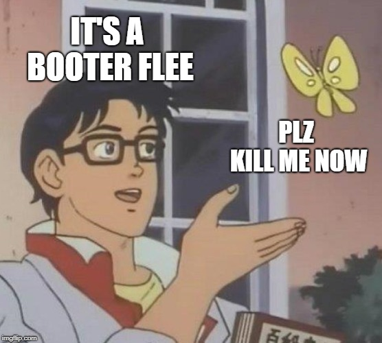 Is This A Pigeon | IT'S A BOOTER FLEE PLZ KILL ME NOW | image tagged in memes,is this a pigeon | made w/ Imgflip meme maker