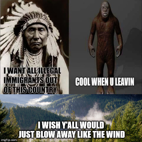 Let me tell you about illegal immigration and the destruction it causes... |  I WISH Y'ALL WOULD JUST BLOW AWAY LIKE THE WIND | image tagged in nature,native american,ape,ancestors,america,illegal immigration | made w/ Imgflip meme maker