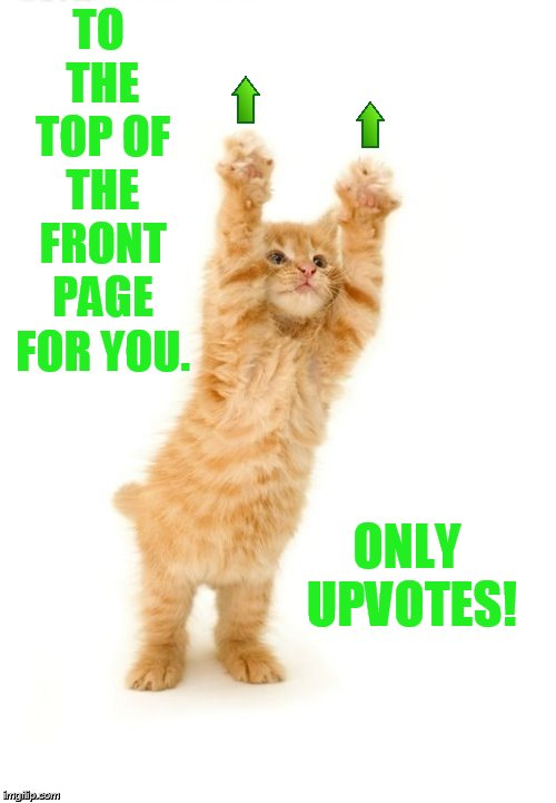 TO THE TOP OF THE FRONT PAGE FOR YOU. ONLY UPVOTES! | made w/ Imgflip meme maker