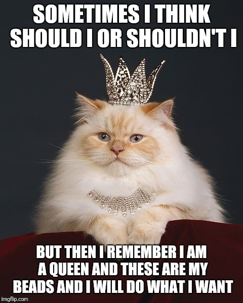 the-queen-cat | SOMETIMES I THINK SHOULD I OR SHOULDN'T I BUT THEN I REMEMBER I AM A QUEEN AND THESE ARE MY BEADS AND I WILL DO WHAT I WANT | image tagged in the-queen-cat | made w/ Imgflip meme maker