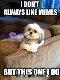 I DON'T ALWAYS LIKE MEMES BUT THIS ONE I DO WHY U LOOKING DOWN HERE | image tagged in the most interesting dog in the world | made w/ Imgflip meme maker