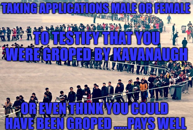 Gropd | TAKING APPLICATIONS MALE OR FEMALE OR EVEN THINK YOU COULD HAVE BEEN GROPED .....PAYS WELL TO TESTIFY THAT YOU WERE GROPED BY KAVANAUGH | image tagged in kavanaugh | made w/ Imgflip meme maker