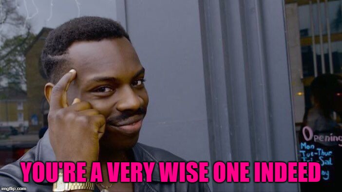 Roll Safe Think About It Meme | YOU'RE A VERY WISE ONE INDEED | image tagged in memes,roll safe think about it | made w/ Imgflip meme maker