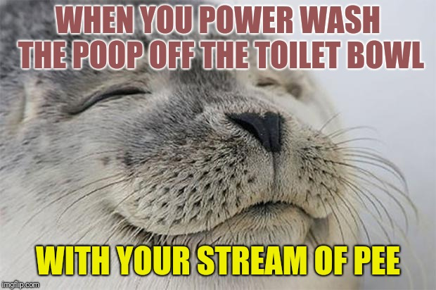 Time Saving Satisfied Seal | WHEN YOU POWER WASH THE POOP OFF THE TOILET BOWL WITH YOUR STREAM OF PEE | image tagged in memes,satisfied seal,timesheet meme,foghorn leghorn,random tag,clean up in aisle 6 | made w/ Imgflip meme maker