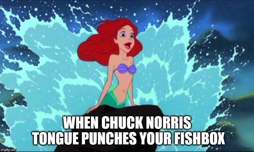 "Reply meme to Socrates ""Plenty Fish in the Sea"". Dirty Meme Week, Sep. 24 - Sep. 30, a socrates event. 