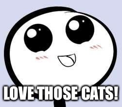 just cute | LOVE THOSE CATS! | image tagged in just cute | made w/ Imgflip meme maker