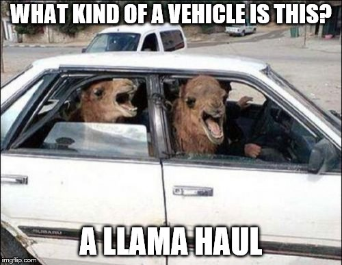 Quit Hatin |  WHAT KIND OF A VEHICLE IS THIS? A LLAMA HAUL | image tagged in memes,quit hatin | made w/ Imgflip meme maker