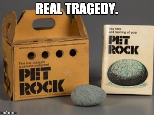 Pet rock | REAL TRAGEDY. | image tagged in pet rock | made w/ Imgflip meme maker