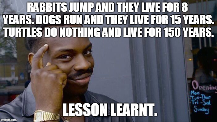Roll Safe Think About It Meme |  RABBITS JUMP AND THEY LIVE FOR 8 YEARS. DOGS RUN AND THEY LIVE FOR 15 YEARS. TURTLES DO NOTHING AND LIVE FOR 150 YEARS. LESSON LEARNT. | image tagged in memes,roll safe think about it | made w/ Imgflip meme maker