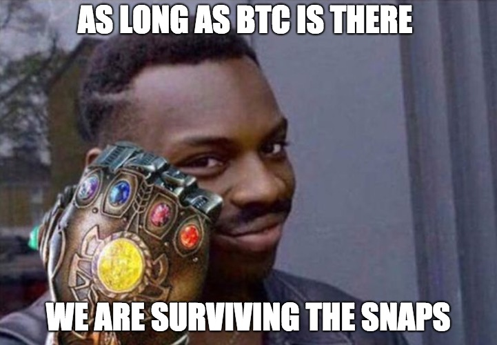 AS LONG AS BTC IS THERE; WE ARE SURVIVING THE SNAPS | made w/ Imgflip meme maker