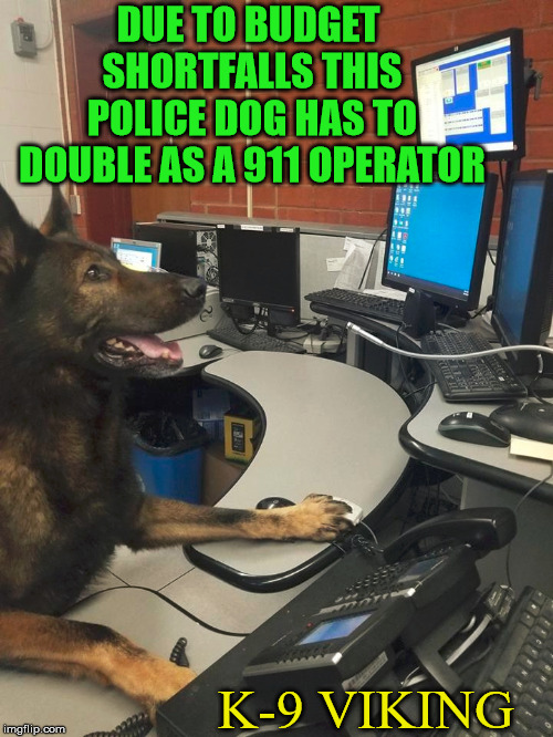Police dogs are so awesome! | DUE TO BUDGET SHORTFALLS THIS POLICE DOG HAS TO DOUBLE AS A 911 OPERATOR K-9 VIKING | image tagged in memes,police dogs,funny dog,smart dog,pet humor,awesome dog | made w/ Imgflip meme maker