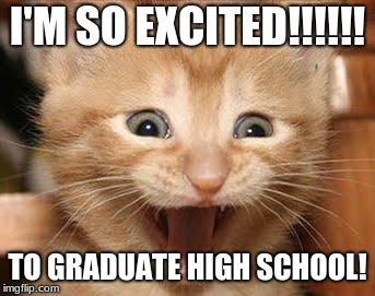 Excited Cat | I'M SO EXCITED!!!!!! TO GRADUATE HIGH SCHOOL! | image tagged in memes,excited cat | made w/ Imgflip meme maker