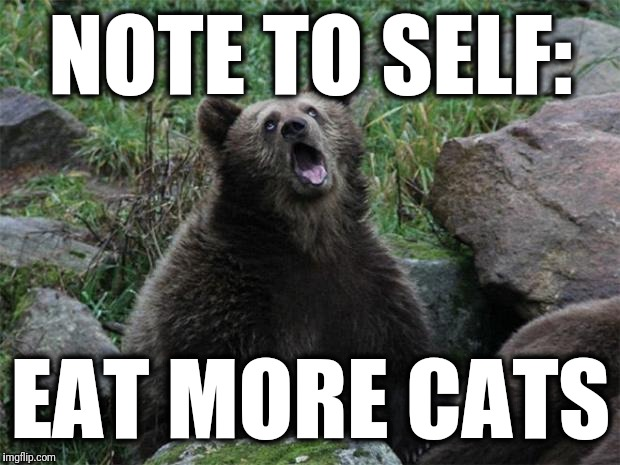 Sarcastic Bear | NOTE TO SELF: EAT MORE CATS | image tagged in sarcastic bear | made w/ Imgflip meme maker