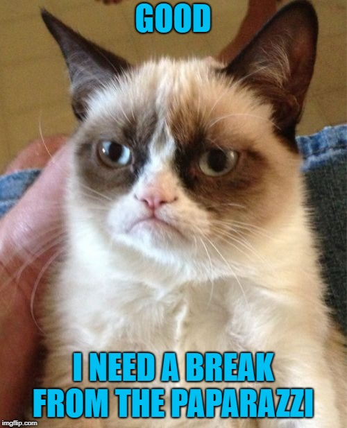 Grumpy Cat Meme | GOOD I NEED A BREAK FROM THE PAPARAZZI | image tagged in memes,grumpy cat | made w/ Imgflip meme maker