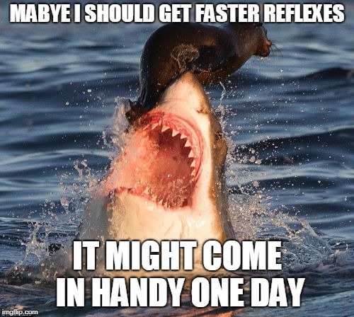This is why you should get faster reflexes | MABYE I SHOULD GET FASTER REFLEXES IT MIGHT COME IN HANDY ONE DAY | image tagged in memes,travelonshark | made w/ Imgflip meme maker