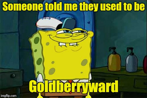 Dont You Squidward Meme | Someone told me they used to be Goldberryward | image tagged in memes,dont you squidward | made w/ Imgflip meme maker
