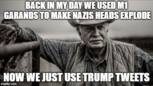Pink Mist | BACK IN MY DAY WE USED M1 GARANDS TO MAKE NAZIS HEADS EXPLODE NOW WE JUST USE TRUMP TWEETS | image tagged in memes,nazis,headshot,tweet,pink mist,m1 garand | made w/ Imgflip meme maker
