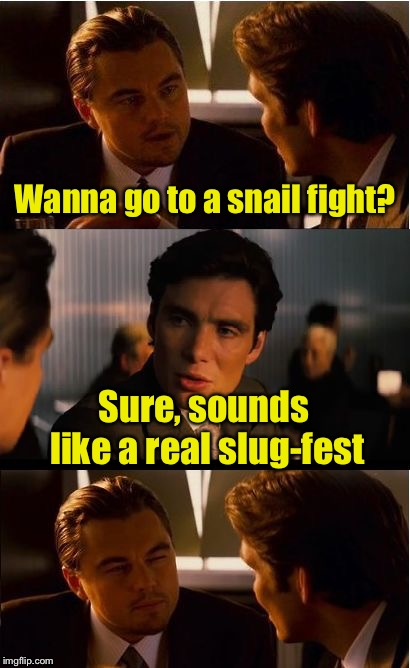 Don't slug the messenger | Wanna go to a snail fight? Sure, sounds like a real slug-fest | image tagged in memes,inception,snail,bad pun | made w/ Imgflip meme maker