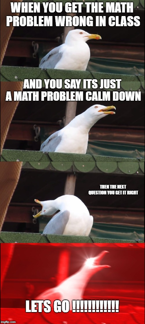 made by tom the turtle |  WHEN YOU GET THE MATH PROBLEM WRONG IN CLASS; AND YOU SAY ITS JUST A MATH PROBLEM CALM DOWN; THEN THE NEXT QUESTION YOU GET IT RIGHT; LETS GO !!!!!!!!!!!! | image tagged in memes,inhaling seagull | made w/ Imgflip meme maker