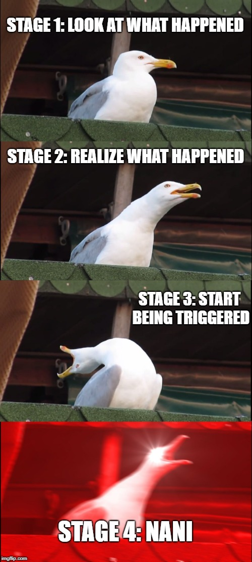4 stages of triggery | STAGE 1: LOOK AT WHAT HAPPENED STAGE 2: REALIZE WHAT HAPPENED STAGE 3: START BEING TRIGGERED STAGE 4: NANI | image tagged in memes,inhaling seagull,omae wa mou shindeiru,triggered,seagull | made w/ Imgflip meme maker