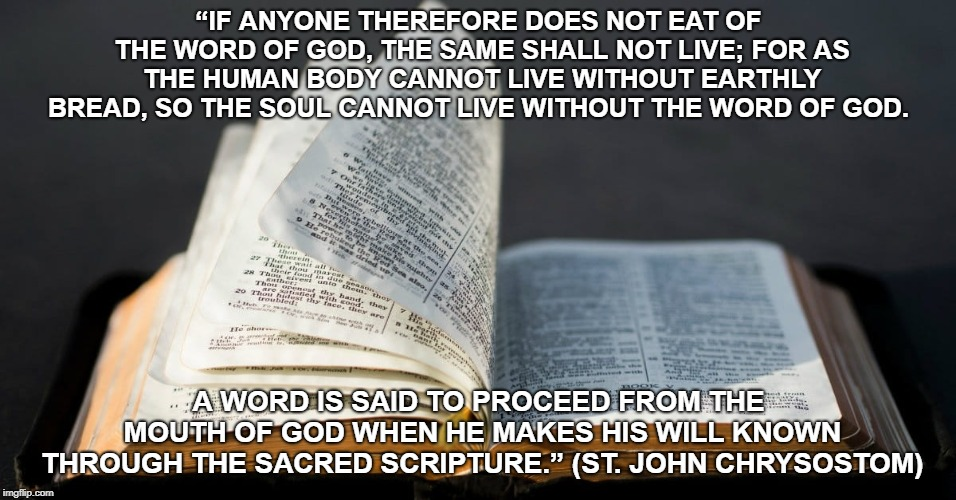"""Bible is food 