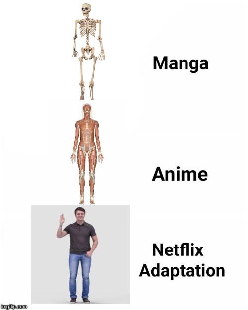 Netflix Adaptation Imgflip