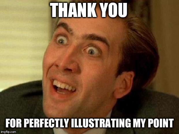 Nick Cage | THANK YOU FOR PERFECTLY ILLUSTRATING MY POINT | image tagged in nick cage | made w/ Imgflip meme maker