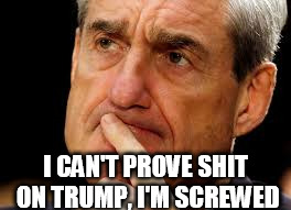 I CAN'T PROVE SHIT ON TRUMP, I'M SCREWED | image tagged in mueller | made w/ Imgflip meme maker
