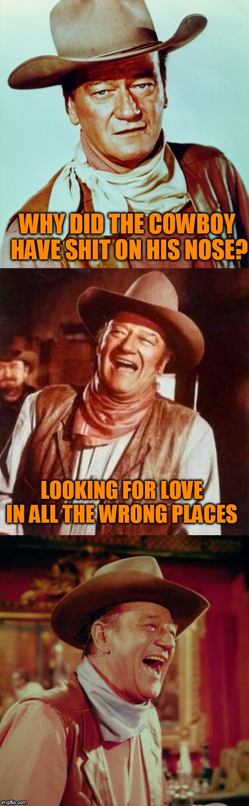 John Wayne Puns | WHY DID THE COWBOY HAVE SHIT ON HIS NOSE? LOOKING FOR LOVE IN ALL THE WRONG PLACES | image tagged in john wayne puns | made w/ Imgflip meme maker