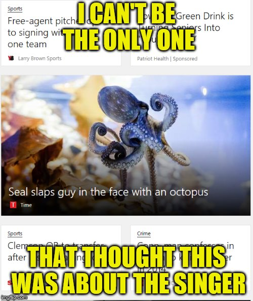 They should really say *A* seal instead of Seal.  I was really curious as to why he was slapping people...very disappointing |  I CAN'T BE THE ONLY ONE; THAT THOUGHT THIS WAS ABOUT THE SINGER | image tagged in seal,octopus,slap,news | made w/ Imgflip meme maker