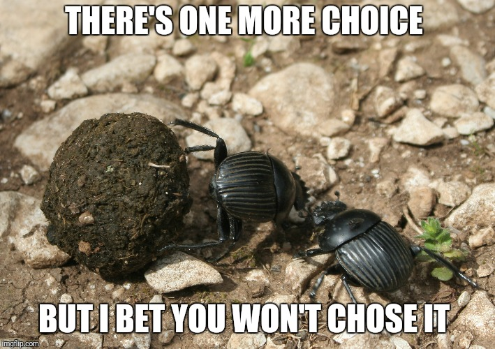 The next election  | THERE'S ONE MORE CHOICE BUT I BET YOU WON'T CHOSE IT | image tagged in the next election | made w/ Imgflip meme maker