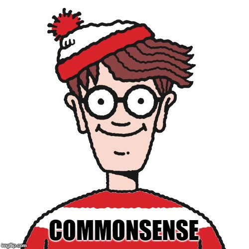 Where's Waldo | COMMONSENSE | image tagged in where's waldo | made w/ Imgflip meme maker