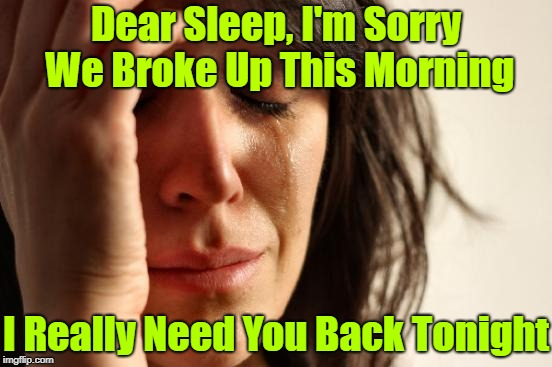 Please forgive me | Dear Sleep, I'm Sorry We Broke Up This Morning I Really Need You Back Tonight | image tagged in memes,first world problems,insomnia,sleepy | made w/ Imgflip meme maker