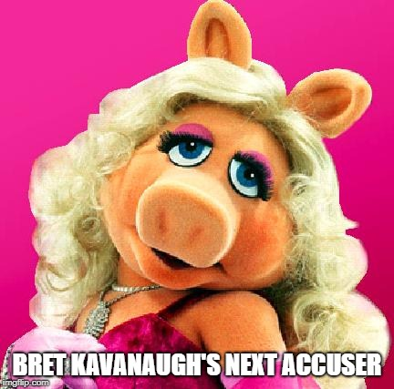 Miss Piggy | BRET KAVANAUGH'S NEXT ACCUSER | image tagged in miss piggy | made w/ Imgflip meme maker