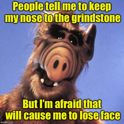 Keep your nose | People tell me to keep my nose to the grindstone But I'm afraid that will cause me to lose face | image tagged in alf,memes,nose,bad pun | made w/ Imgflip meme maker