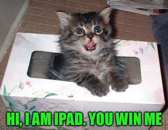 Jerkoff | HI, I AM IPAD. YOU WIN ME | image tagged in jerkoff | made w/ Imgflip meme maker