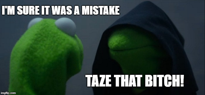 Evil Kermit Meme | I'M SURE IT WAS A MISTAKE TAZE THAT B**CH! | image tagged in memes,evil kermit | made w/ Imgflip meme maker